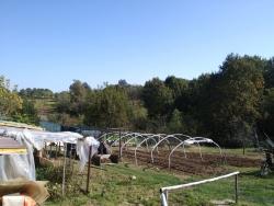 Terreno in vendita in via novi, Pralormo