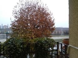 Quadrilocale in vendita in via Divisione Alpina Cuneese 6, Racconigi
