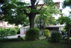 Attico in vendita Via Stupinigi 46, Vinovo